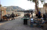شهردار مسجدسلیمان: بازارچه شهرداری به منظور ساماندهی دست فروشان احداث شد