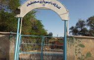 بخشی از ارائه اقدامات واحد کشتارگاه دام شهرداری مسجدسلیمان