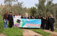آئین روز درختکاری توسط شهرداری مسجدسلیمان گرامی داشته شد