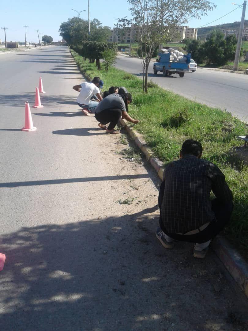گزارش تصویری از حاشیه زنی ، پاکسازی شستشو و رنگ آمیزی جداول و بلوارها و کاشت گل های فصلی توسط واحد فضای سبز شهرداری مسجدسلیمان در روزهای اخیر