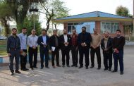 پروژه فاز اول پلاک کوبی درختان توسط شهرداری مسجدسلیمان