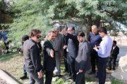 شهردار مسجدسلیمان: عملیات تعریض و بهسازی محور سالور آغاز شد+تصاویر