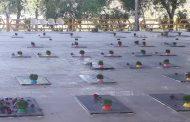 اهداء یک شاخه گل بر مزار شهدای گرانقدر، تقدیر از زحمات تلاشگران اورژانس و آتش نشانی با تقدیم یک شاخه گل ، گلکاری بلوار نفتک و میدان دانشگاه توسط شهرداری مسجدسلیمان